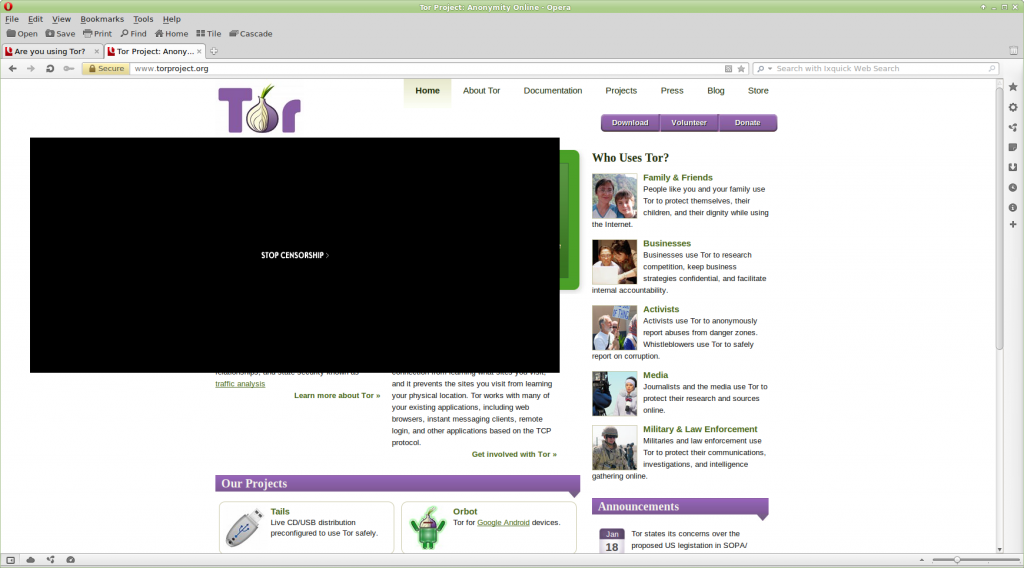 image of blacked out tor website