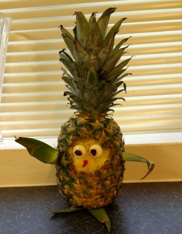 mr pineapple head